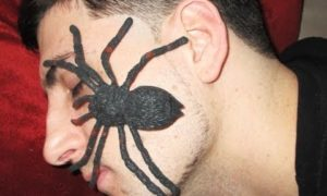 Boyfriend Pranked With Spider - PRANKVSPRANK